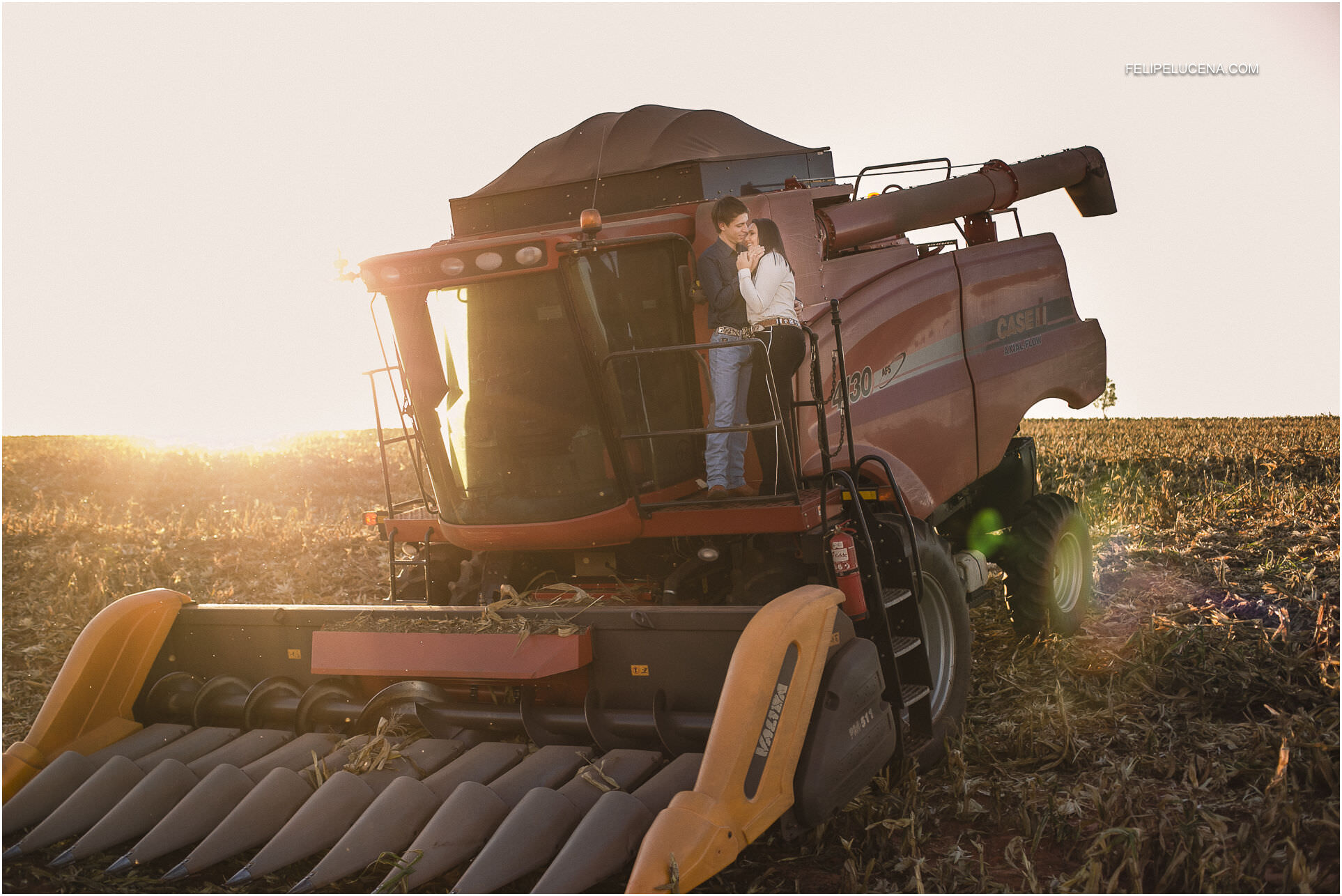 maquina colheita